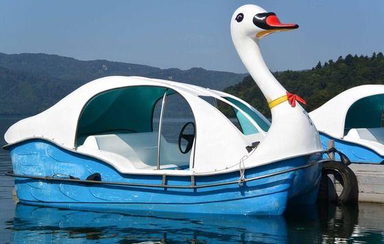十和田湖の白鳥 Aomori Japan