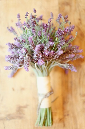 Lavender: a gift for luck, meaning love and devotion I like the look of lavender when its less compact, really like the loose, free look