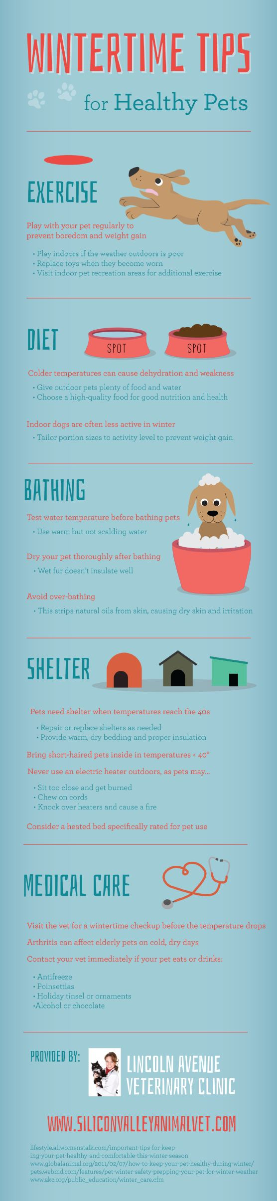 Pet owners should avoid using electric heaters outdoors, as pets may sit too close and get burned, chew on cords, or knock over heaters and cause a fire hazard. Discover other safety tips by clicking over to this San Jose pet clinic infographic.