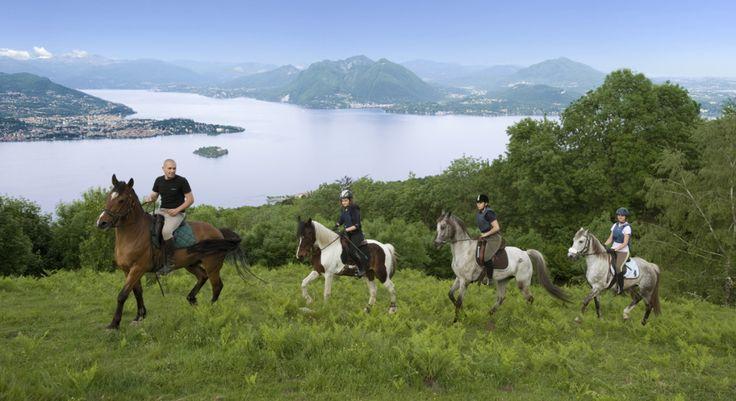 A Cavallo Sul Lago Maggiore - A Cavallo Sul Lago Maggiore   Il Lago Maggiore offre davvero tanto; dalle visite guidate agli splendidi palazzi dei Borromeo alla natura dei giardini botanici,  parchi e riserve naturali del Lago.  In uno splendido scenario si puo' andare in bici, al Lago a prendere il sole e fare un bagno, percorrere itinerari eno-gastronomici e molto altro. Andare a cavallo sul Lago Maggiore  con guide e istruttori qualificati e' un esperenza unica.