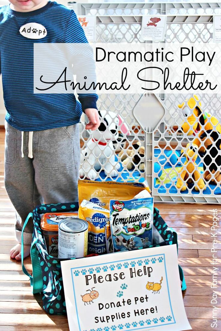 top ideas about service learning community animal shelter dramatic play