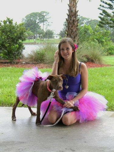 Dog Tutu with Matching tutu for yourself, great for Halloween phots! | Turnabout - Clothing on ArtFire