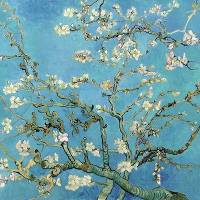 Vincent van Gogh - Çiçekli Badem Dalları, San Remy, c.1890, Almond Branches in Bloom, San Remy, c.1890 - Art Print - AllPosters.com.tr'de.