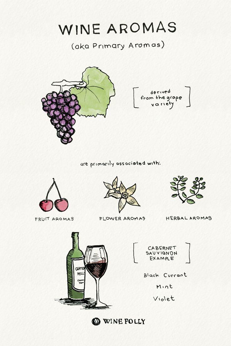 Wine Aromas - Primary Aromas - http://winefolly.com/tutorial/tips-on-tasting-wine-bouquet-vs-aroma/