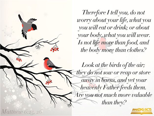 Therefore I say unto you, Take no thought for your life, what ye shall eat, or what ye shall drink; nor yet for your body, what ye shall put on. Is not the life more than meat, and the body than raiment? Behold the fowls of the air: for they sow not, neither do they reap, nor gather into barns; yet your heavenly Father feedeth them. Are ye not much better than they?  (Matthew 6:25-26)