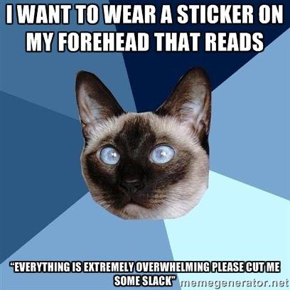 chronic-illness-cat:   from the amazing... - Chronic Illness Memes