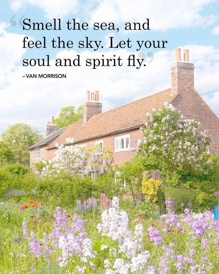 """Inspirational quotes and sayings about summer: """"Smell the sea, and feel the sky. Let your soul and spirit fly."""" -Van Morrison"""