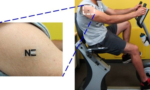 Lactate Sensing Temporary Tattoo Lets Athletes Perform At Their Peak Longer