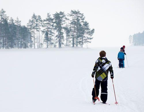 Nordic Ski Trails Guide