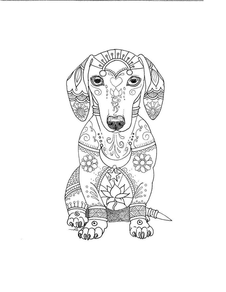 Pin by Kandi Jacobs on coloring page in 2020   Dog ...