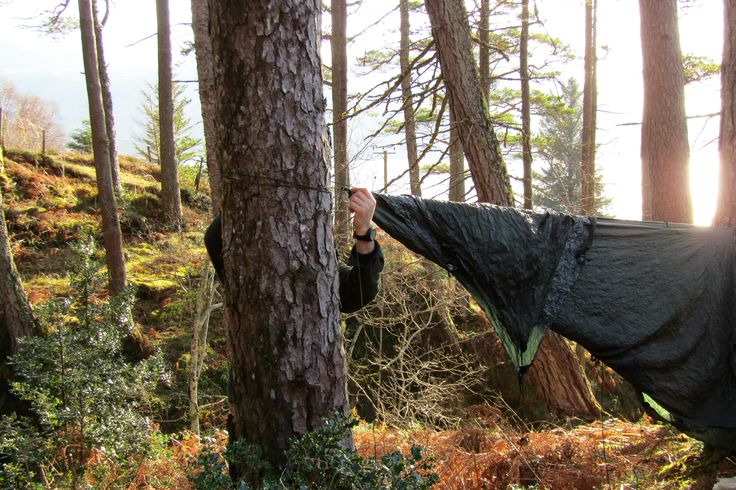 Survival skills @Wildwood Bushcraft  Slow adventuring in Scotland  Reconnecting with nature