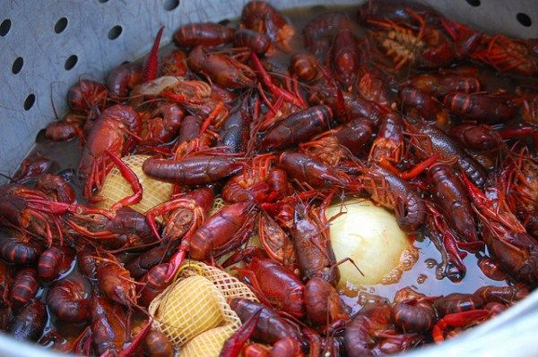 We all know Cajuns and people from Louisiana love to do three things, and we do it well -- cook, drink, and party. We asked you crazy people what your favorite Cajun foods are, and what you like to cook. Well here are your Top 5 favorite Cajun foods -- and we even gave you a recipe to learn how to cook them! (You know ... for the Yankees who come to our site).