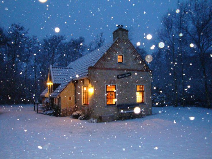Winter op Terschelling