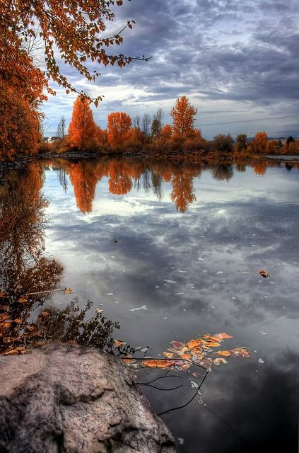 Autumn in Montana by SheldonPhotography