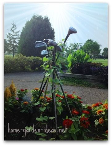 See how clever our local golf course is in upcycling the golf clubs in the garden! I'm totally going to try this !