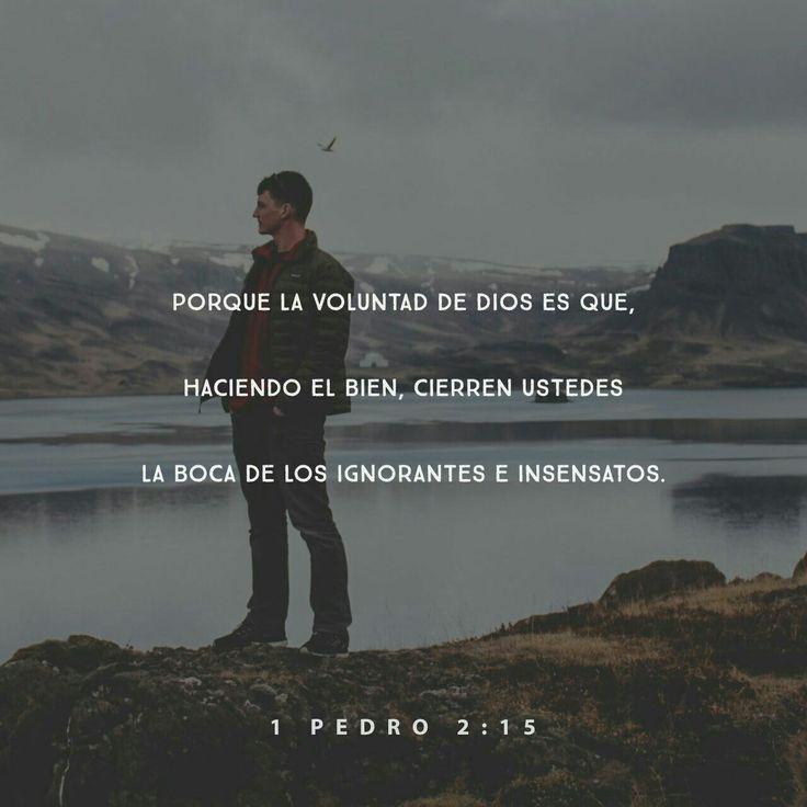 Dios quiere que ustedes hagan el bien, para que la gente ignorante y tonta no tenga nada que decir en contra de ustedes. 1 Pedro 2:15 TLA