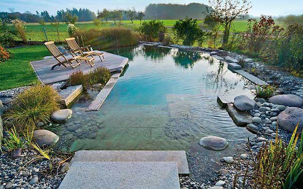 pool: schwimmbecken im garten | natural / organic pools, Garten und Bauen