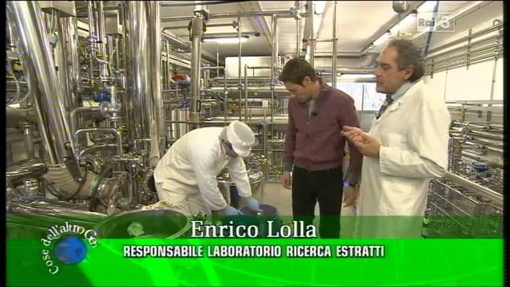 Una visita virtuale all'Erbolario!