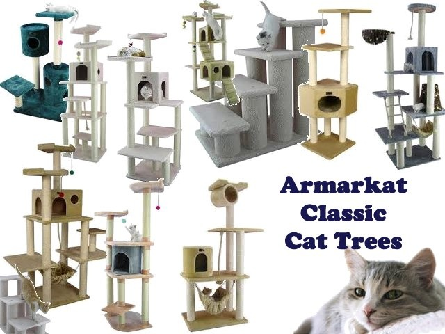 find the best cat trees cat scratching posts cat climbing towers at the lowest