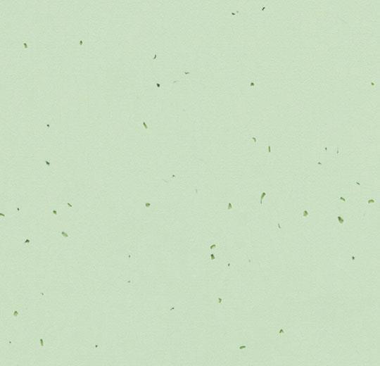 50238 sea green