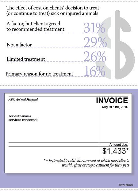 179 best Veterinary news \ trends images on Pinterest - restraining order form