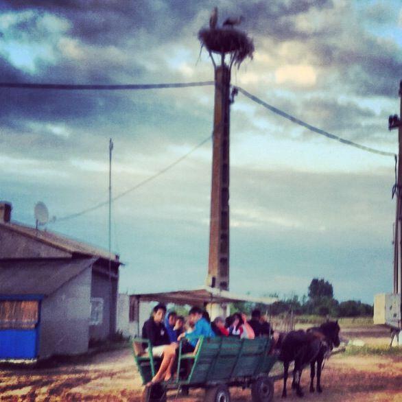 Letea village, Tulcea - Danube delta
