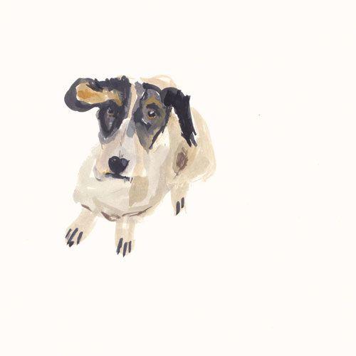 painting + illustration - jackie mancuso