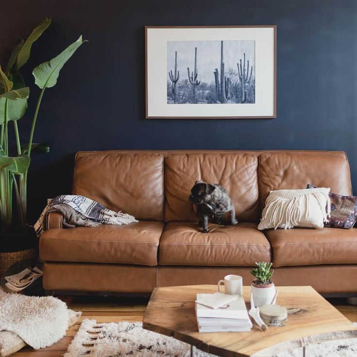 A Warm And Calming Home For Healers Brownsbeautiful Epaint Leather Couchdistressed Couchblue