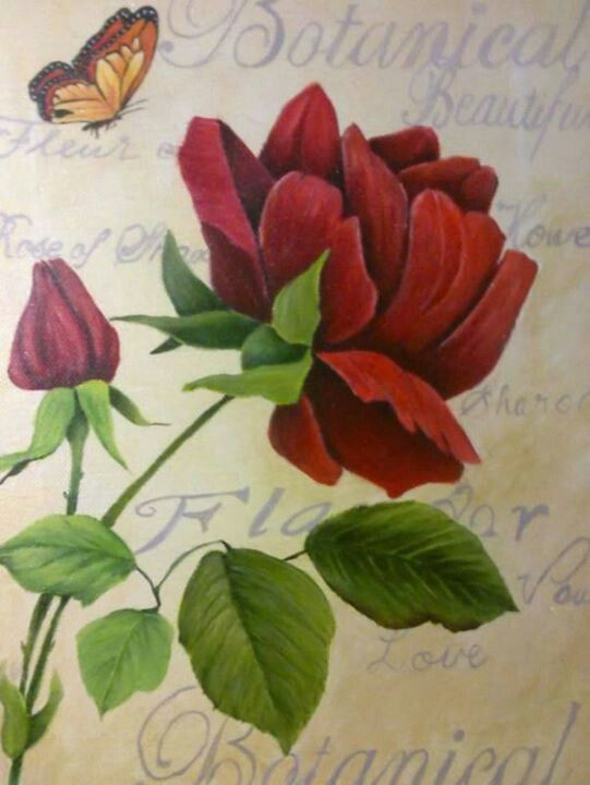 Red rose and butterfly