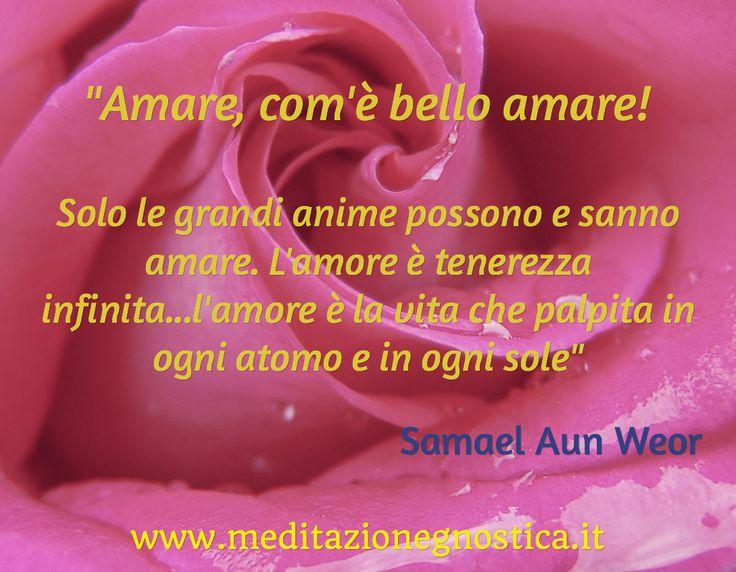 Citazione dal Matrimonio Perfetto di Samael Aun Weor - www.meditazionegnostica.it