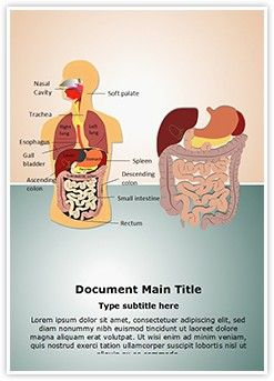 Digestive System MS Word Template is one of the best MS Word Templates by EditableTemplates.com. #EditableTemplates #Medical #Science #Human #Stomach #Cavity #Trachea #Esophagus #Tissue #Healthy #Pancreas #Tongue #Section #Appendix #Colon #Anatomy #Digestive #Palate #Intestine #Gallbladder #Body #Illustration #Anatomical #Scientific #Descending #Digestive System #Spleen #Health #Nasal #Rectum #Bladder #Small #Liver #Organ #Cell #Anus #Ascending #Torso