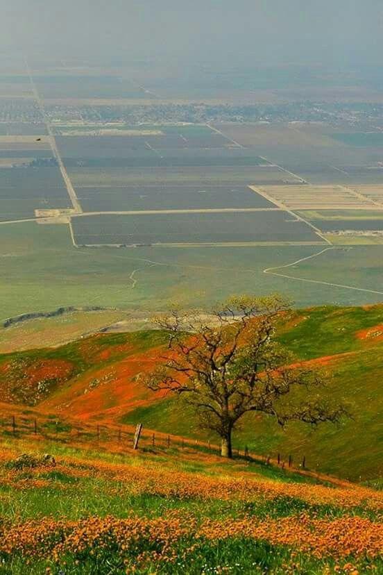 San Joaquin Valley, Bakersfield, Ca.