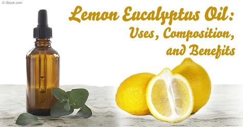 Learn about fragrant lemon eucalyptus oil's benefits, composition, and proper therapeutic and practical applications in this article. http://articles.mercola.com/herbal-oils/lemon-eucalyptus-oil.aspx