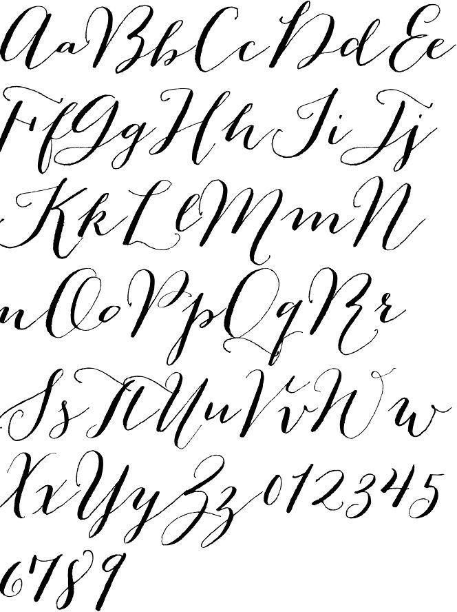 Best 25+ Calligraphy alphabet ideas on Pinterest ...