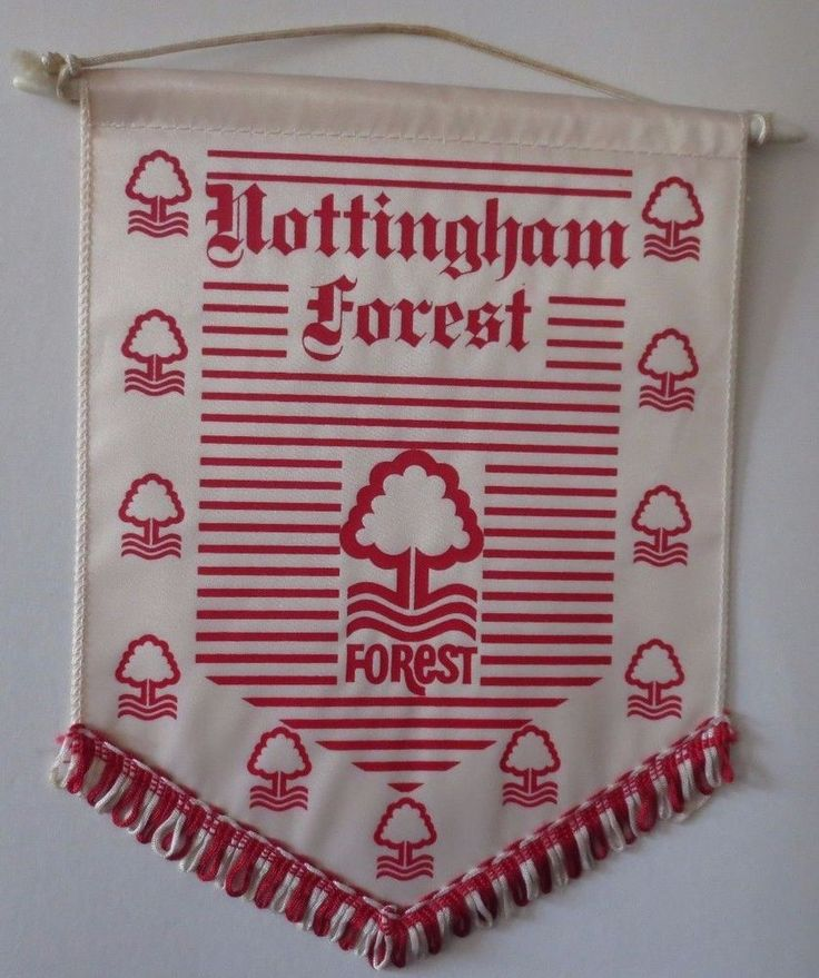 Old Nottingham Forest Football Club Pennant, City Ground England Championship  | eBay