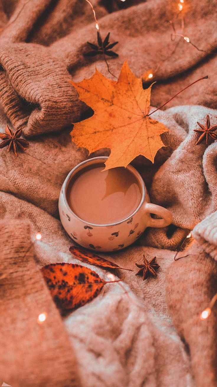 Fall Vibes Coffee And Sweater Fall Wallpaper Cute Fall Wallpaper Iphone Wallpaper Fall