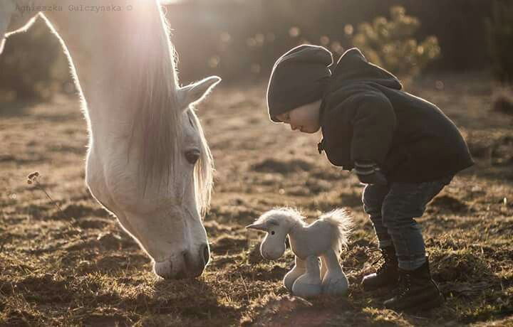 Pure tenderness  ...