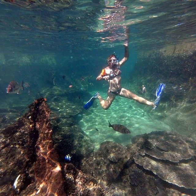5 places to snorkel near Brisbane | The Courier-Mail