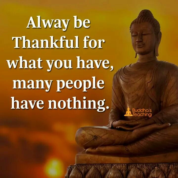 Buddha Family Quotes: 25+ Best Gratitude Quotes On Pinterest