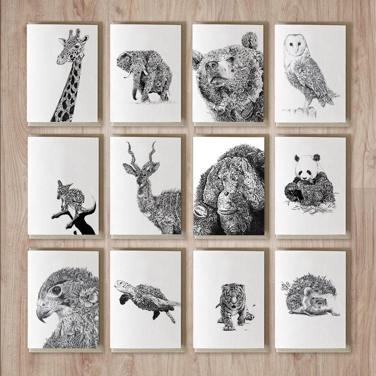 Marini Ferlazzo wildlife greeting cards by Australian artist Nathan Ferlazzo.