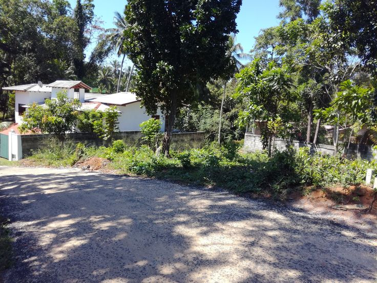 Land For Sale In Kadawatha Real Estate Land For Sale Real Estate Property
