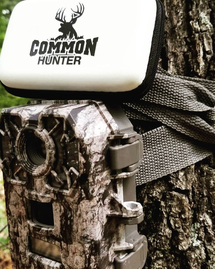 ��#trailcamtuesday is the best! ☀️Summer preparation is key to success in the Fall! ���� Checking cameras with @common_hunter trail cam viewers and accessories has made it 10x more easy and fun! No more wasted time! . . . #bowhunt #commonhunter #hunting #trailcam #trailcamera #whatgetsyououtdoors #sickforit #mathews #halon #stealthcam #trailcamera #bigbuck #bowhunting #arkansas #iamsportsman #scouting #fun #hike #hunt #outdoors #grizzlystik #july4th #velvetbuck #bachelorgroup #buck #deer…