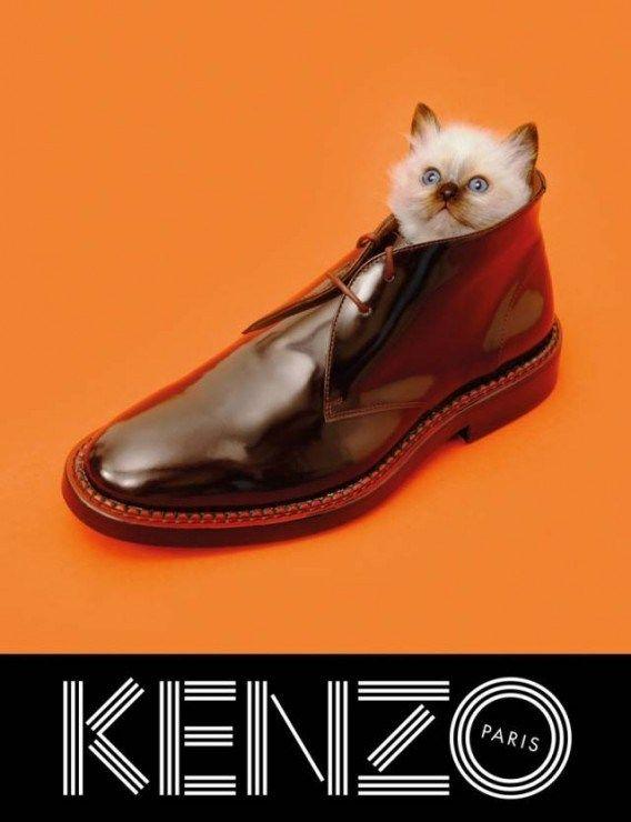 Kenzo Campagne publicité 2013