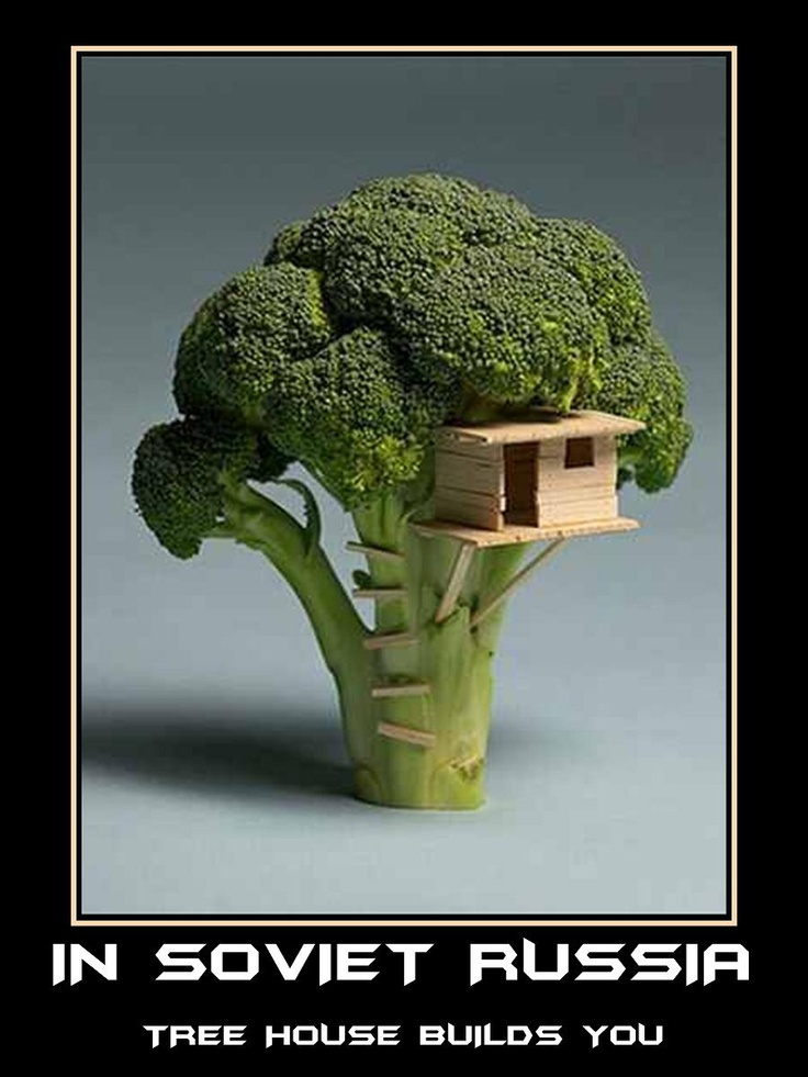 In Soviet Russia... tree house builds you.