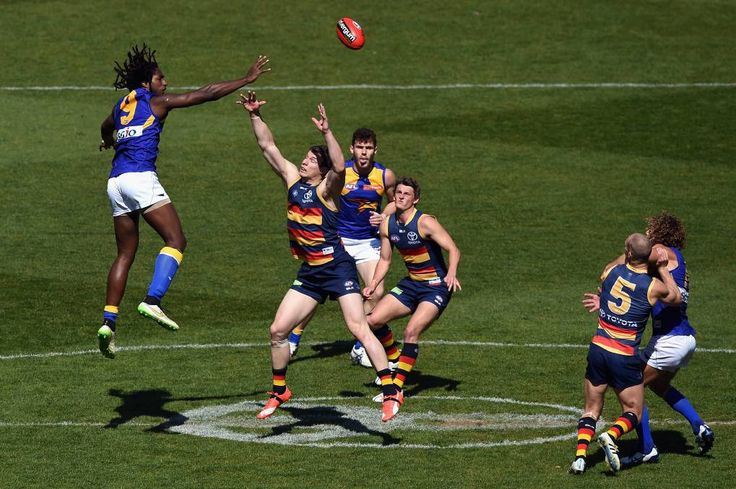 Rnd 22. Crows smash the Eagles. Can they go all the way?