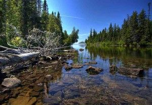 Isle Royale National Park.  I have been to many of the national parks but this one is special.  You can't just drop in on a whim, though.  You have to take a boat from Minnesota or fly by seaplane from Michigan.  Plan to stay and hike, there are no roads but there are over 100 miles of hiking trails and many primitive camping areas.