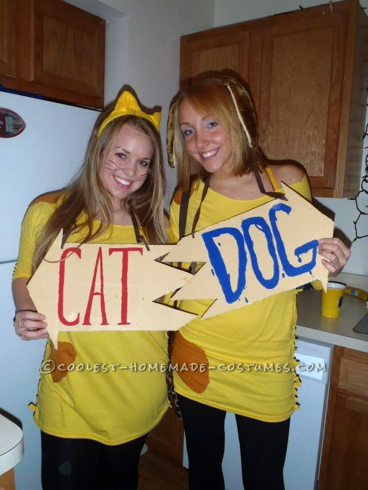 cheap and easy catdog couple halloween costume - Halloween Home Costumes