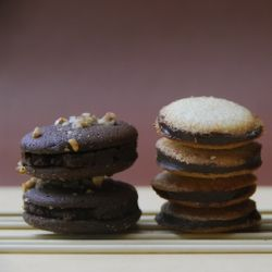 milano cookie, milano, homemade milano cookie, cookies, chocolate ...