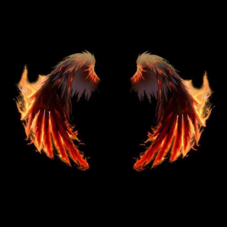 Fire wings png | Wings png, Wings wallpaper, Wings