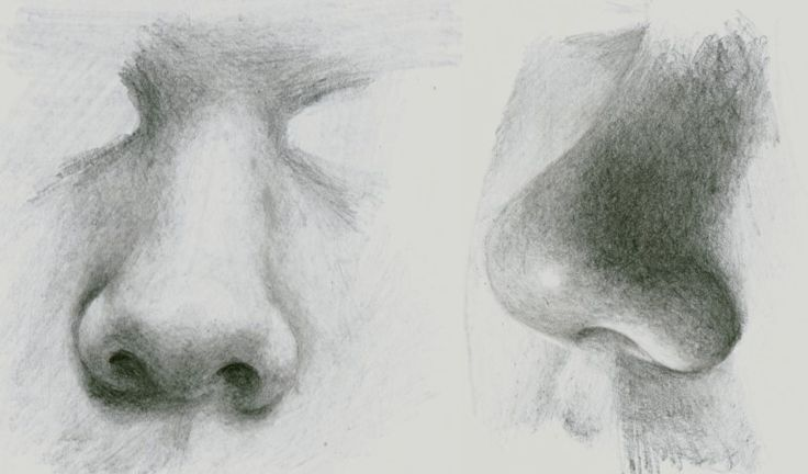 How to draw a realistic nose video